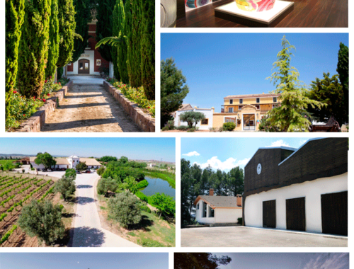 ruta-del-vino-bodegas-requena-utiel-renfe-comunidad-valenciana