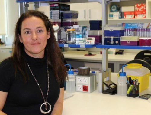 la-hepatologa-de-la-fe-marina-berenguer-nueva-presidenta-de-la-sociedad-internacional-de-trasplante